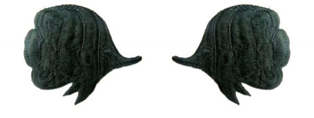 1 Paar Applikationen Patch Sticker Fische AA355-01 Farbe: schwarz