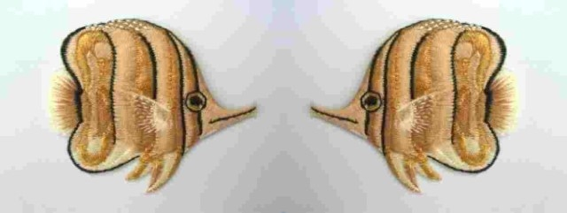1 Paar Applikationen Patch Sticker Fische AA355-06