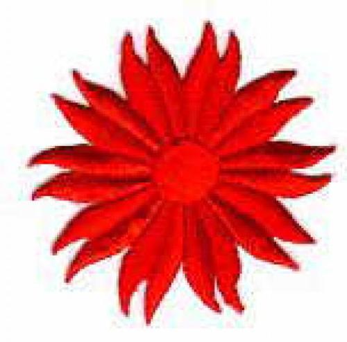 Margeriten-Applikationen Durchmesser 5cm AA106-01 rot