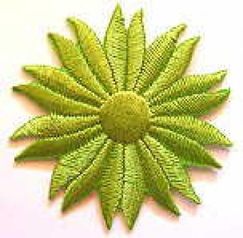 Margeriten-Applikationen Durchmesser 5cm AA106-13 Farbe: Hellgrün