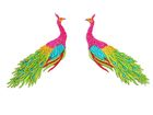 1 Paar Applikationen vom Vogel Pfau 4x12cm AA463-5