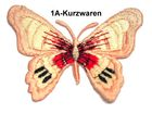 1 Applikation Patch Schmetterling Farbe: Lachs