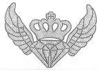 Bügelmotiv Krone mit Diamand und Flügel 28,5 x 20 cm