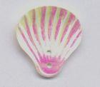 40 Stück Muscheln groß Farbe: Beige