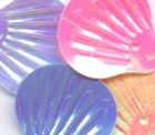 40 Stück Muscheln groß Farbe: mix