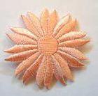 Margeriten-Applikationen Durchmesser 5cm AA106-18 Farbe: Lachs