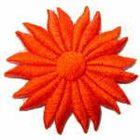 Margeriten-Applikationen Durchmesser 5cm AA106-24 Farbe: Orange