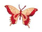 1 Stück Applikation Patch Schmetterlinge 8,5 x 5,5cm