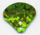 100 Gramm Muscheln klein 50105 Farbe: Hellgrün