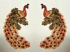 1 Paar Applikationen Vogel Pfau 5,5x11cm Farbe: Rot