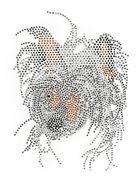 Applikation Bügelmotiv Chinese Crested Dog 14,5x20cm