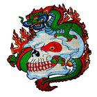 Applikation Patch Sticker Chinesischer Drache 15 x 14,5cm