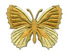 Applikation Patch Schmetterling 7,3 x 5,5cm Farbe: Ocker