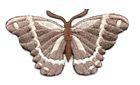 Applikation Patch Schmetterling 8,3 x 4,5cm Farbe: Braun