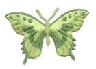 Applikation Patch Schmetterling 8,5 x 5,5cm Farbe: Grasgrün