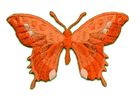 Applikation Patch Schmetterling 8,5 x 5,5cm Farbe: Blutorange