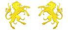 1 Paar Applikationen Wappen Pferd 6,5 x 11cm Farbe: Gelb