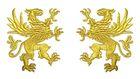 1 Paar Applikationen Wappen Adler Greif 11 x 6cm Farbe: Lurex-Gold