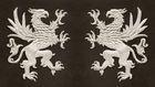 1 Paar Applikationen Wappen Adler Greif 11 x 6cm Farbe: Lurex-Silber