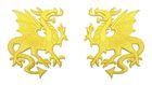 1 Paar Applikationen Wappen Drachen 14,4 x 10cm Farbe: Gelb