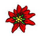 Edelweiss-Applikationen Wiesn Trachten 3,5cm Farbe: Rot