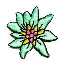 Edelweiss-Applikationen Wiesn Trachten 3,5cm Farbe: Türkis