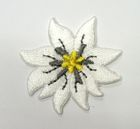 1 Stück Edelweiss-Applikationen Wiesn Trachten Durchmesser 3,5cm Farbe: Weiss