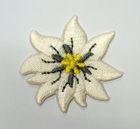 1 Stück Edelweiss-Applikationen Wiesn Trachten Durchmesser 3,5cm Farbe: Beige