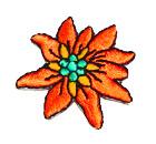 Edelweiss-Applikationen Wiesn Trachten 3,5cm Farbe: Terracotta
