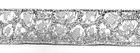 10m Borte Webband Muster Leopard 16mm breit Farbe: Lurex-Silber