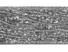 10m Borte Webband Muster Zebra 16mm breit Farbe: Lurex-Silber