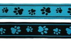 10m Hunde-Borte Webband 25mm breit Farbe: Schwarz-Türkis
