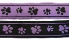 10m Hunde-Borte Webband 16mm breit Farbe: Schwarz-Lila
