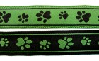 10m Hunde-Borte Webband 16mm breit Farbe: Schwarz-Grün